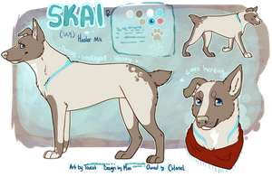 Skai Ref by Toucat