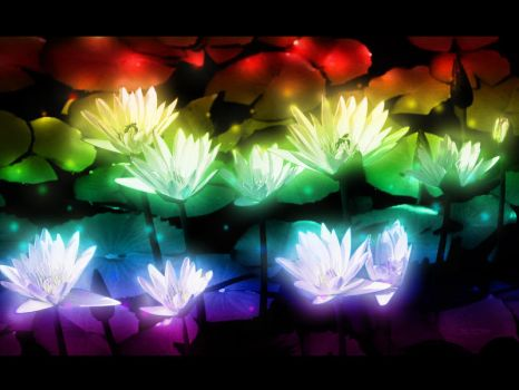 Water Lilies Magic by bLizZter