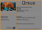 Ursus by GingerAdy