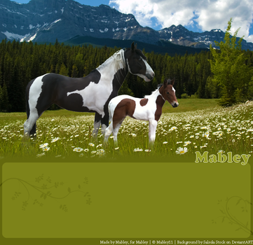 Painted Meadow by Mabley11