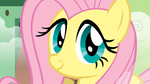fluttersmile by YellowTDash