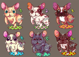 French Bulldog Auctions [CLOSE] by melonycreations