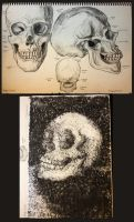skull studies by monkette