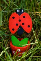 The ladybug by marialivia16