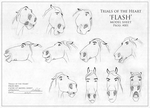 Flash - Model Sheet by Wild-Hearts
