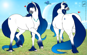 Horse OC Profile Jade Sapphire with background by wsache007