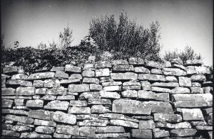 terrace wall by Ajdica