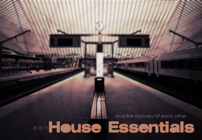 House Essentials by th3guardian