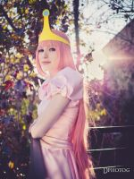 Princess Bubblegum of Adventure Time by Deadpool790