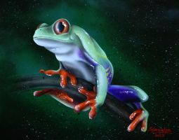 Tropical tree frog by Spanglerart