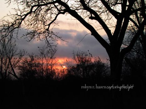 The Lowveld by capturingthelight