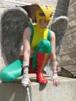 Hawkgirl Costume 4 by msventress