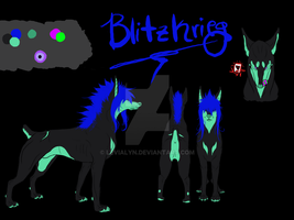 Blitzkrieg Ref 2012 by Levialyn