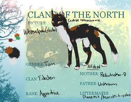 Weaselpaw Reference sheet by Allizia