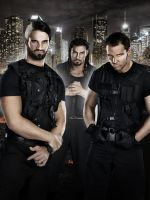 The Shield poster - Ambrose Rollins Reigns by sentryJ