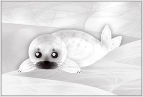 Seal-pup by rockgem