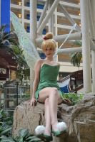 Tinkerbell: A Tinker by Bearer-Of-Darkness