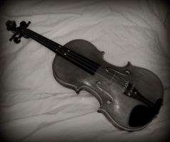 Playing the Melody by Arany-Photography