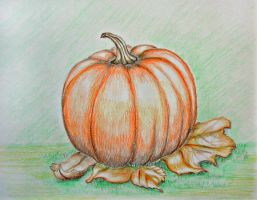 Pumpkin by 123thuraya