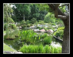 CSULB Garden 2 by JWhile