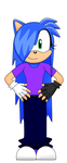 .:Lin The Hedgehog:. Practice! in SAI by LintheHedgehog