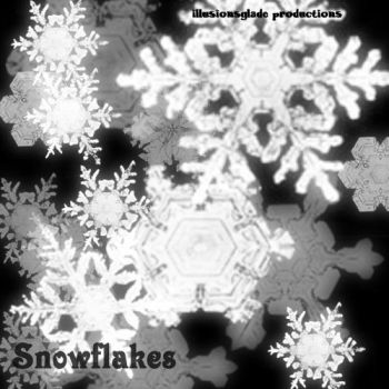 Snow Flake Brushes by IllusionsGlade