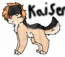 Kaiser by XxQuickTartxX