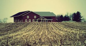 Rows To Barn by treeclimber411