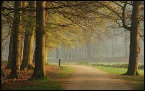 A spring morning at Groeneveld by jchanders