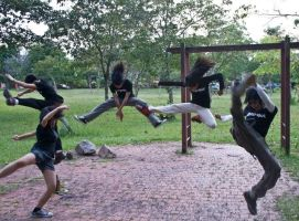 Everybody want KUNGFU FIGHTING by theversion