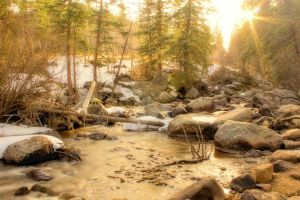 Glacier Creek Spring Thaw by MtnMama