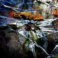 Shattered Glass 2 by Jemmaw89
