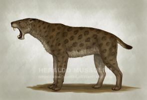 Homotherium latidens by BrokenMachine86