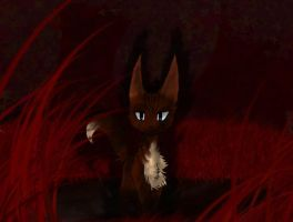 HAWKFROST - dark forest by vampkatz