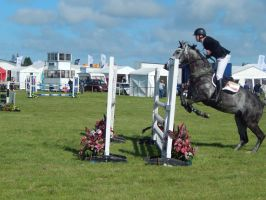 Anglesey Show 2014 Stock 2 by Weatherbroke-Stables