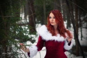 Snow Maiden by SandraVogel