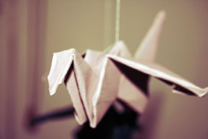 paper birds by ellbamber