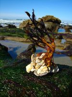SeaWeed 1 by pricecw-stock