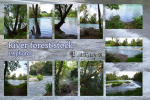 River forest stock by LauraPex