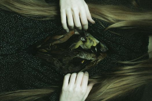 heart of the forest by laura-makabresku