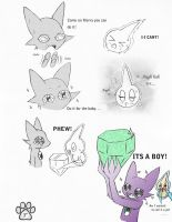 Its a boy! by TOM-CATS