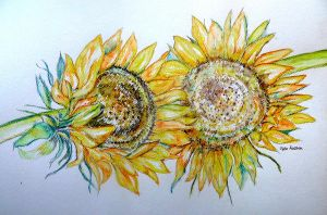 AUGUST SUNFLOWERS TWO by GeaAusten