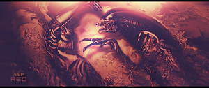 AvP by Red-wins