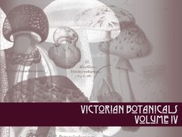 Victorian Botanicals Volume 4 by remittancegirl