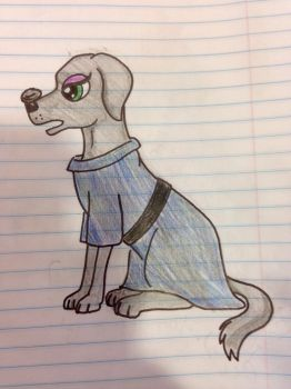 The Labrador and her Bolder by Timelord909