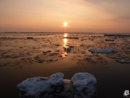 Sunset with mini Icebergs by IndianRain