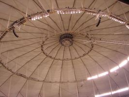 Tropicana Dome by incredibleplum