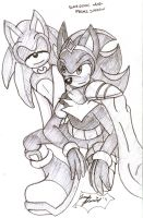 SatBK - Prince Shadow - Slave Sonic by SonicRemix