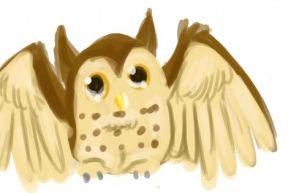 its a owl by Stais