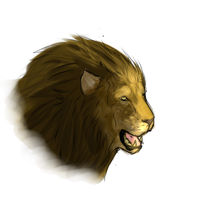 Lion semi-Realism by Allixi
